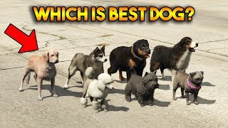 GTA 5 ONLINE : WHICH IS BEST DOG?