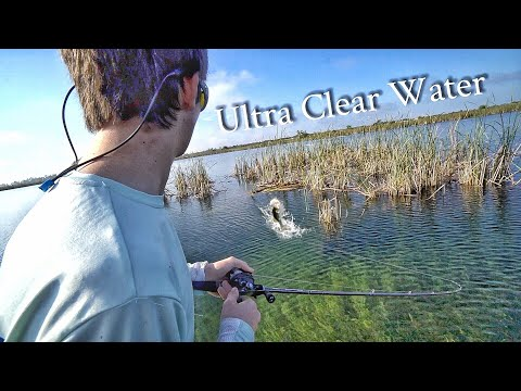 Fishing ULTRA Clear Water for Bass!