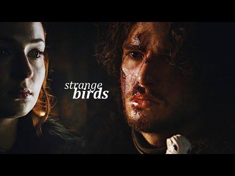 Jon & Sansa | Strange Birds