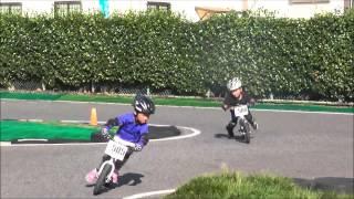 RFC千葉北ランバイクレース 5歳クラス From B→ts