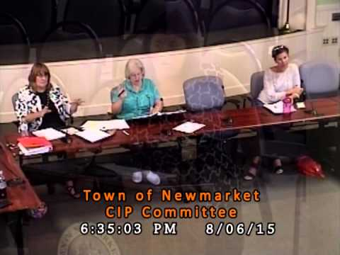 C.I.P. Committee - 08/06/2015 (Newmarket, New Hampshire