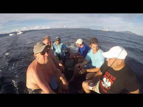 Raja Ampat - West Papua - Diving, Indonesia April 2017