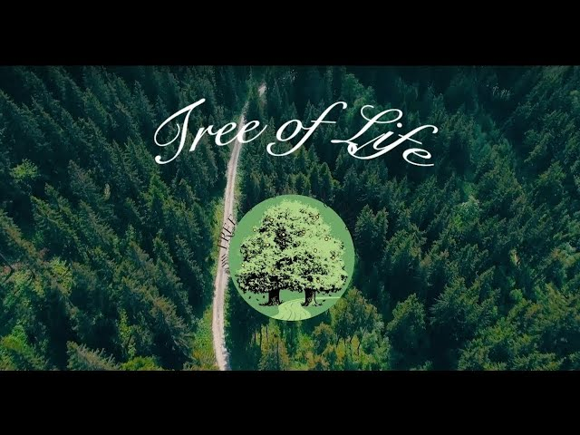 1. Mark Bruce - The Little Time of Peace - Part 1