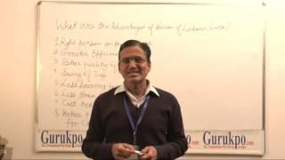 Advantages of division of labour or work (B. COm, M.Com)by Mr. Shiv Jhalani, Biyani Girls College