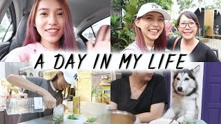 A Day in My Life JB新山一日小导游 Sylvia Cing