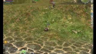 Rohan Online Combat Footage
