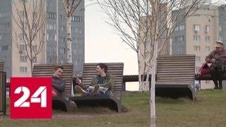Самый проблемный район в Москве превратят в цветущий парк - Россия 24