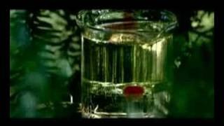 Disillusion - Gloria - Trailer 1