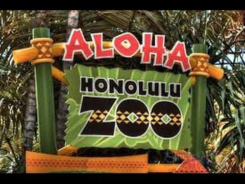 Virtual Tour Of Honolulu Zoo
