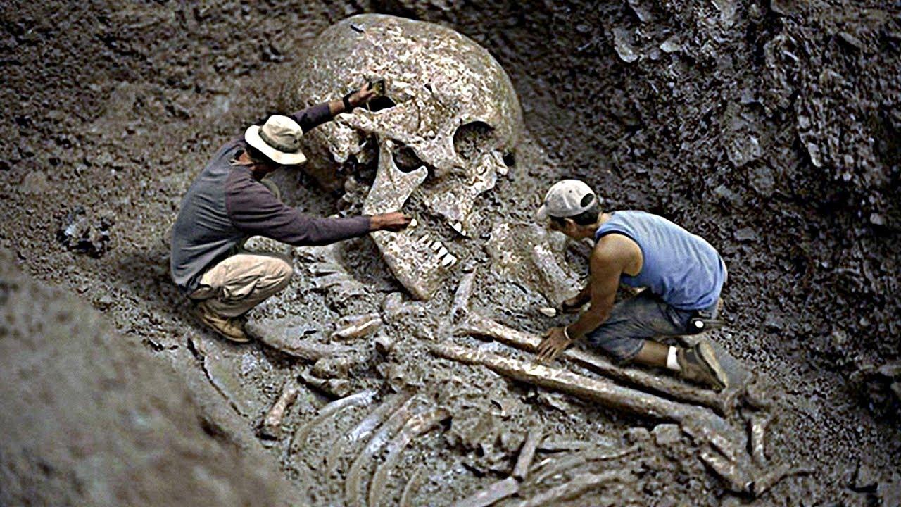 Грачева: Женской факты о великанах найденных археологами женщин первом