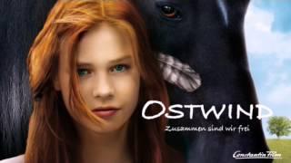 Лучшие фильмы про лошадей!