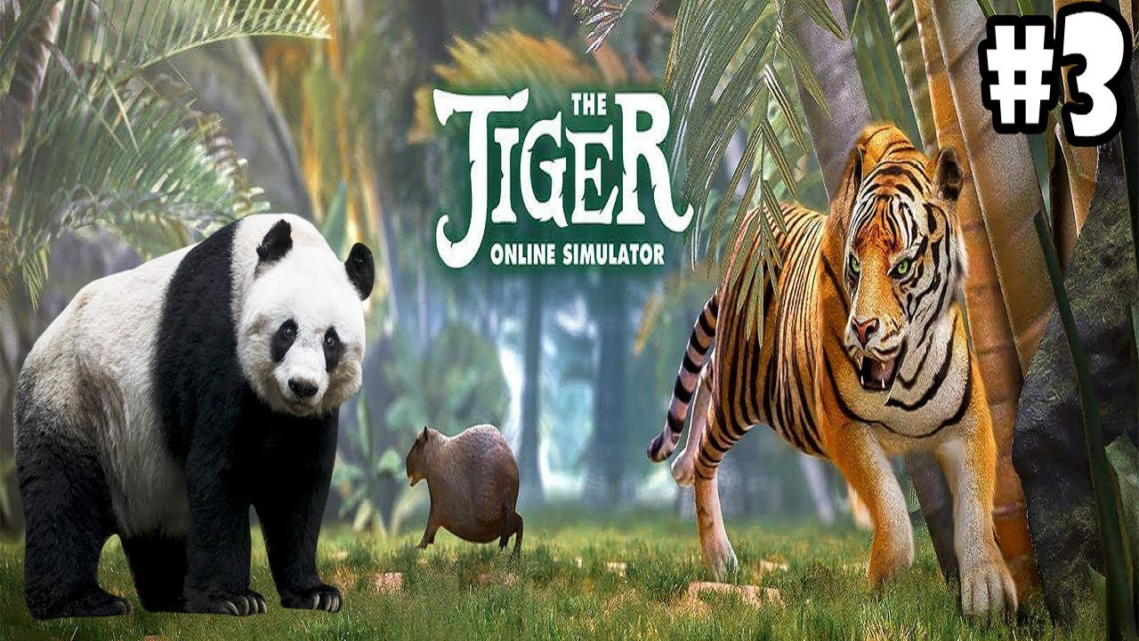 The Tiger Online Simulator -Panda- Android / iOS - Gameplay Episode 3