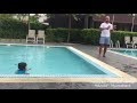 Dayyan swim 🏊♂️ like a fishh.. 😂