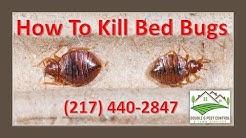 How To Kill Bed Bugs-Palmyra Missouri