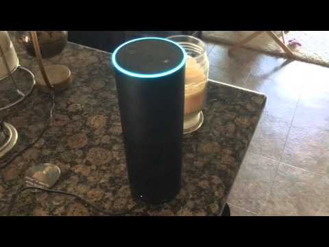 Amazon Echo and Fitbit