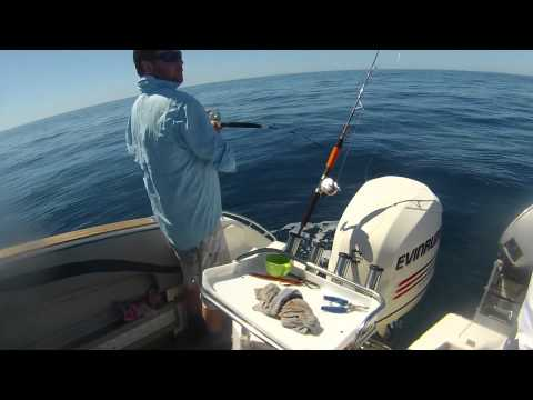 1080p HD - Fishing the Aldermens for Kingfish (Coromandel, New Zealand)