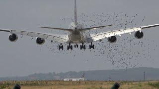 Strong crosswind PARIS CDG, Plane Spotting, Hard landings;  Heavy Take Offs/ Taxiing [Summer 2019]