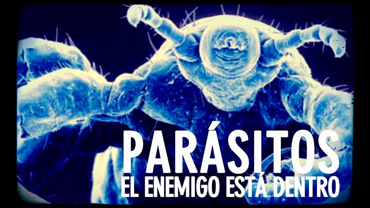 parásitos en tu cuerpo video