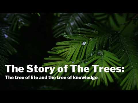 The Story Of The Trees: The Tree Of Life And The Tree Of Knowledge