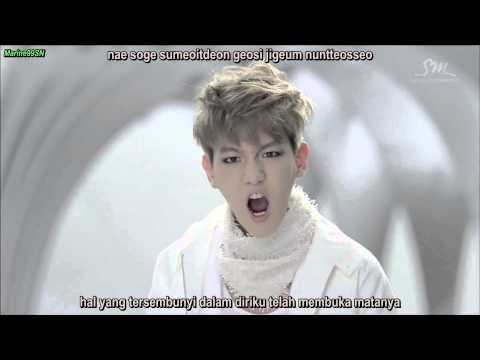 EXO - WOLF [korean Ver.] (indonesian Sub)