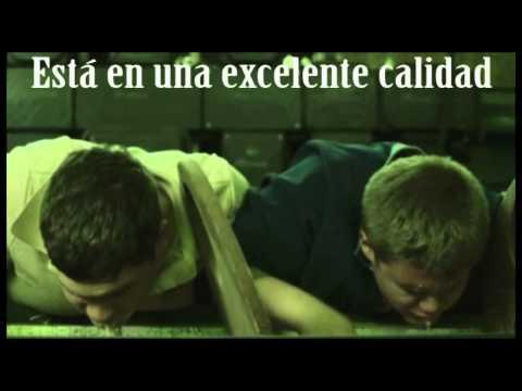 Descargar Taxidermia Completa en Español
