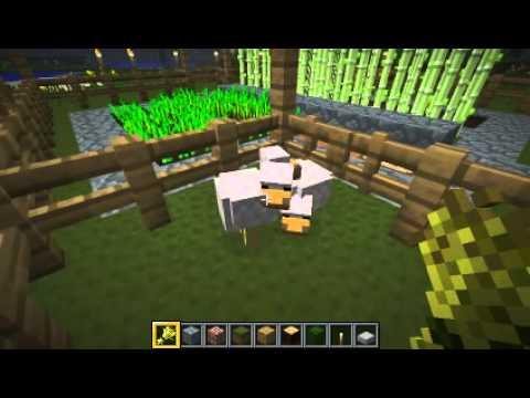 Tuto minecraft faire reproduire des poules youtube - Poule minecraft ...