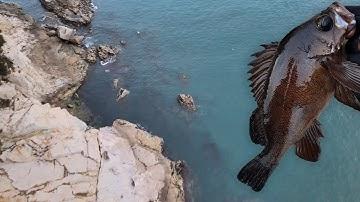 포인트를 찾는 법만 알아도 반 이상은 먹고간다! 볼락 떼가 숨어있는 최고의 장소는?! Rockfishing!