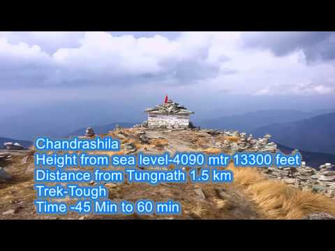 Chopta Tungnath Chandrshila -Trekking Himalaya Resort stay