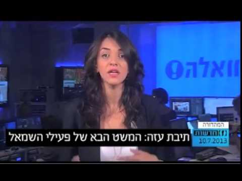 Walla News Gaza Ark Report