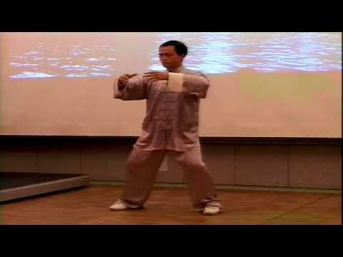 Chen Style Tai Symposium with Master Fu Nengbin Part 2 (of 3 parts)