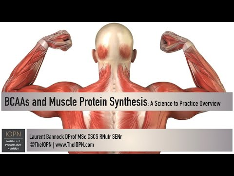BCAAs and Muscle Protein Synthesis: A Science to Practice Overview