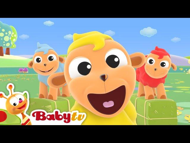 Baa Baa Black sheep 🐑  (Remastered with Lyrics) | Nursery Rhymes & Songs for Kids | BabyTV