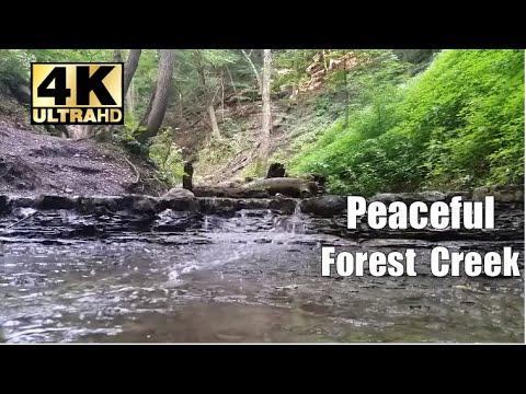 Beautiful running creek / stream, relaxing water sounds through a forest