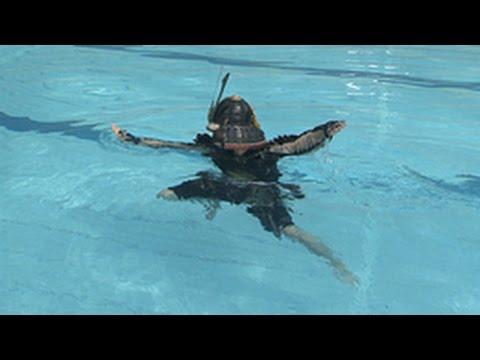 驚愕!日本泳法①(Nihon Eiho - Japanese Classical Swimming)