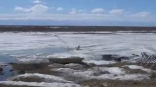 Ykt HF and OA зимняя рыбалка в Якутии(Ykt HF and OA зимняя рыбалка в Якутии 15062016 Зи́мняя рыба́лка — рыбалка в зимний период, обычно на льду через лунку..., 2016-06-15T06:04:25.000Z)
