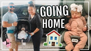 BRINGING OUR BABY HOME | DOGS MEET THEIR NEW SISTER! | Page Danielle