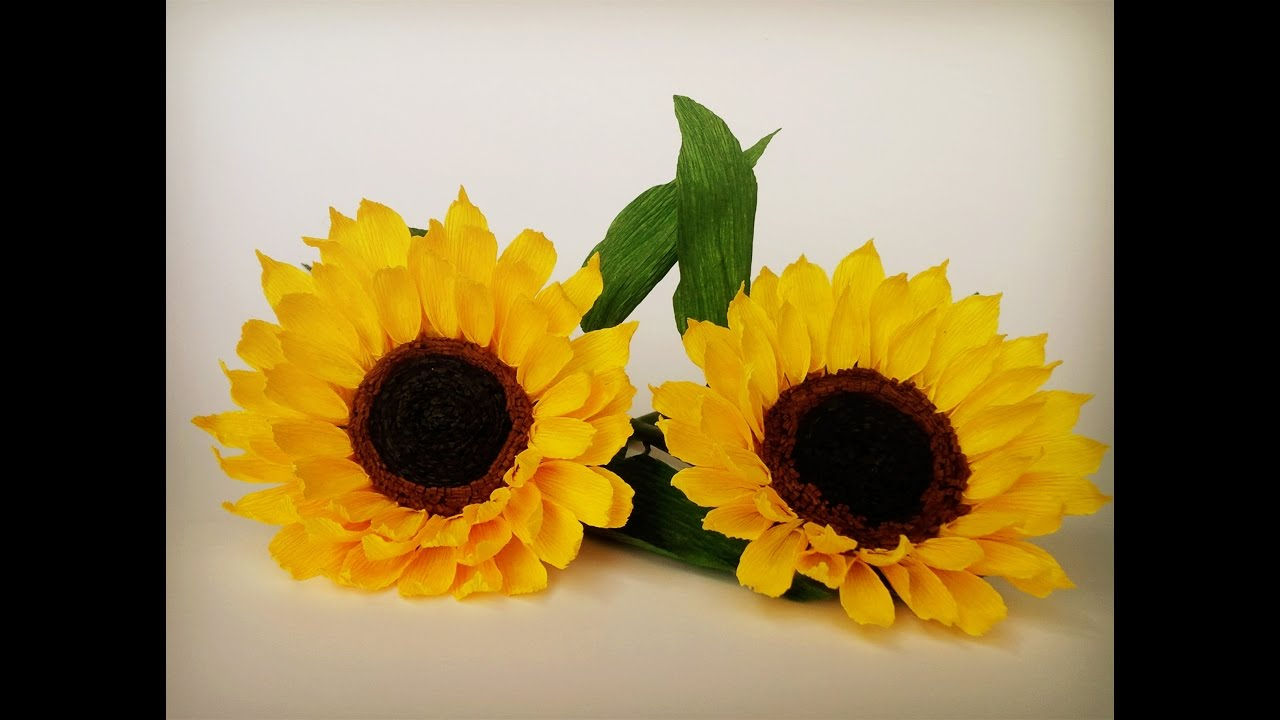 Abc Tv How To Make Sunflower Paper Flower From Crepe Paper Craft Tutorial