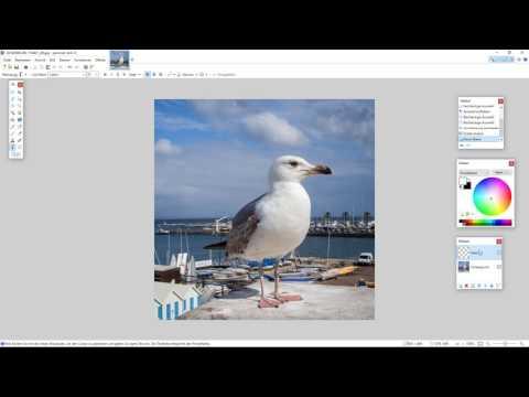 paint.net - Text hinzufügen