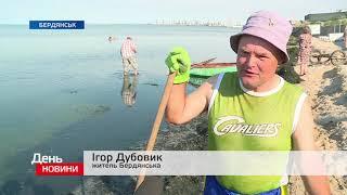 День. Новини TV5. Випуск 15-00 за  06.06.2018