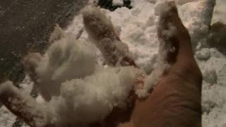 大雪の京都2017 京都市北区堀川通はすごい雪だ!!市バス待ってる間に撮影