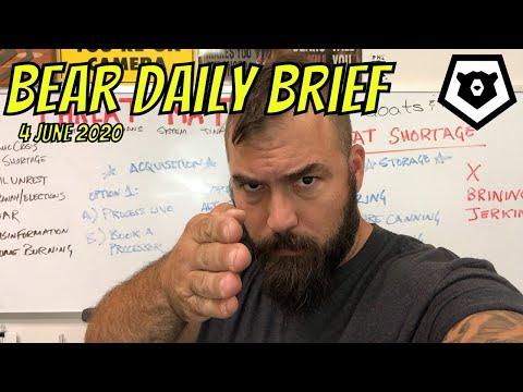 Bear Daily Brief 4 JUN 202
