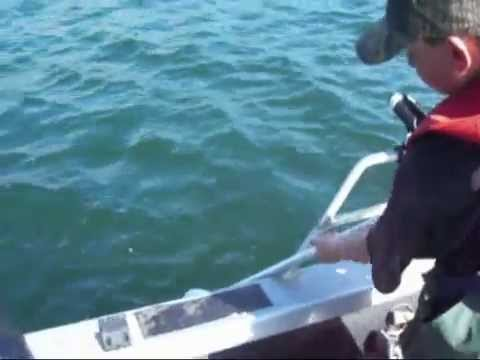 Salmon Fishing And Crabbing Out Of Winchester Bay Oregon