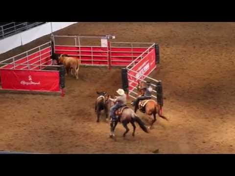Calgary Stampede 2016 - Team Cattle Penning 10 Class win