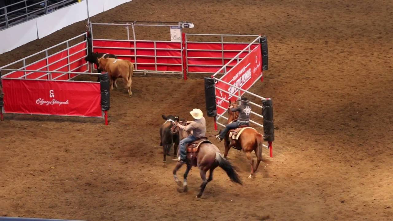 Calgary Stampede 2016 Team Cattle Penning 10 Class Win