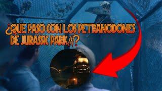 ¿Que Pasó Con los Pteranodones de Jurassic Park 3? - Misterios de Jurassic Park
