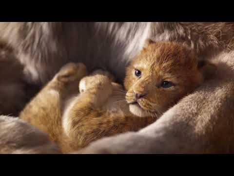 Песня L Круг жизни L Только Аудио L The Lion King 2019 I Circle Of Life (Russian) L The Lion King