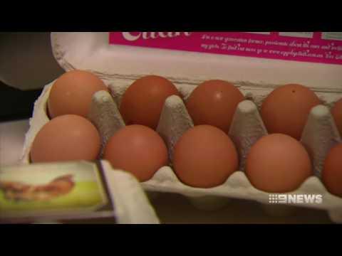 Free range eggs | 9 News Perth