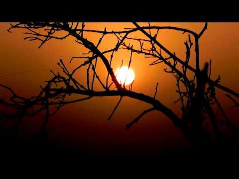 Tangerine Dream - Valley Of The Sun