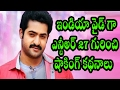 India Wide Shocking Articles About NTR 27th Movie || Latest Telugu Movies 2017 || creative movies