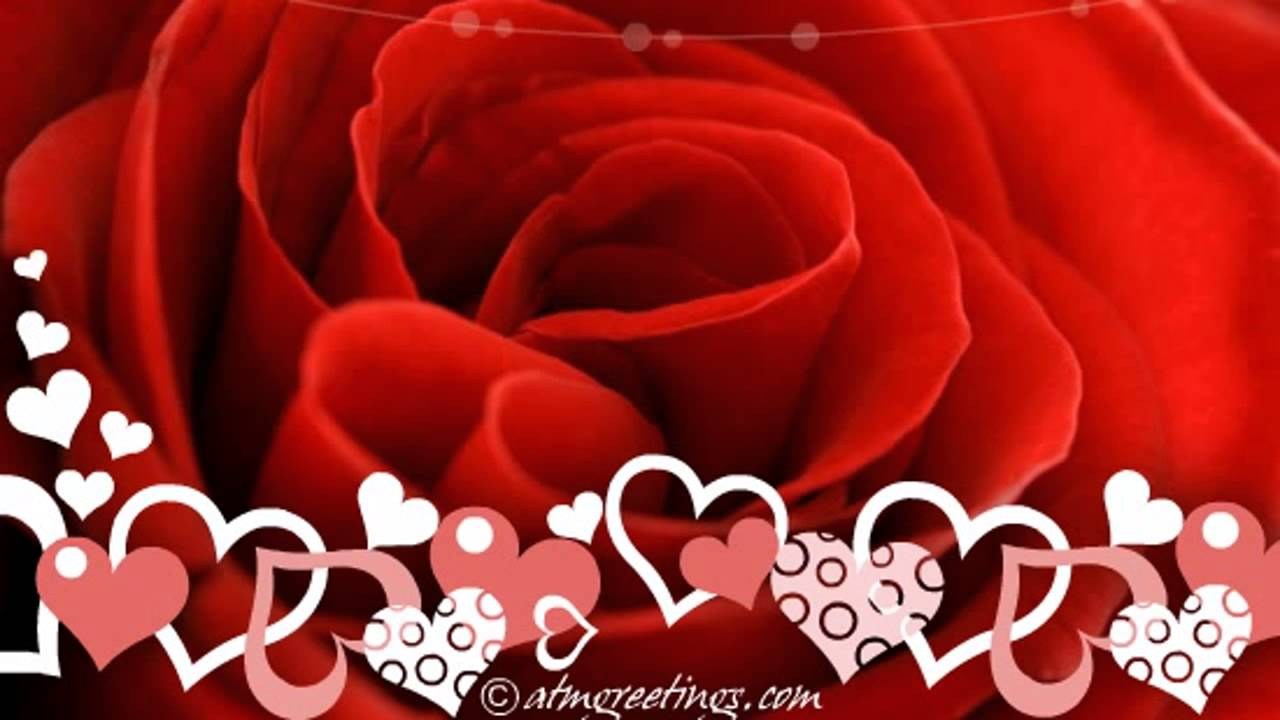 Happy Valentines Day Rose Love Wishes Messages Video 16